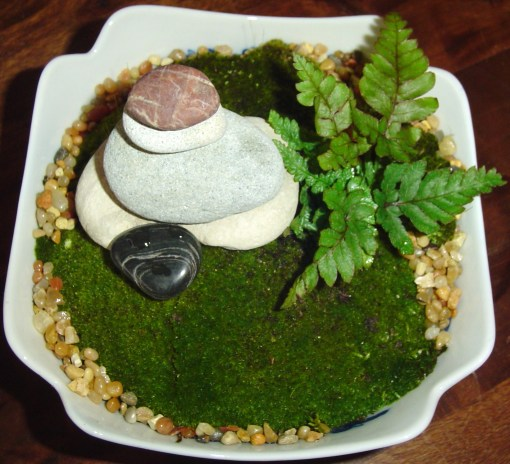 Moss pairs well with ferns, as their needs are nearly the same. Lichens may also be incorporated in the design.