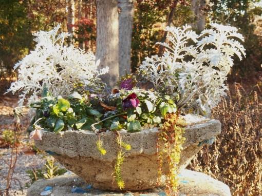 November 22, 2014 frost 008