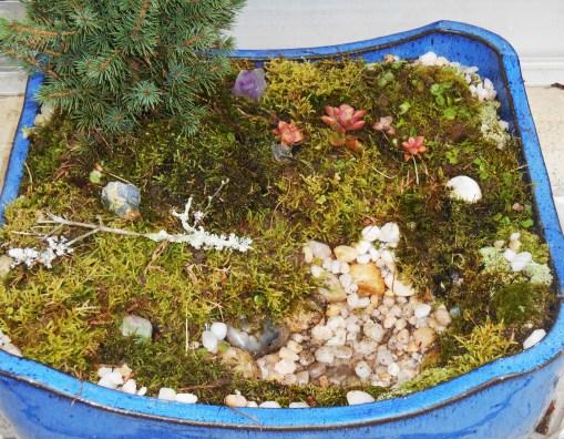 November 25, 2014 moss garden 013