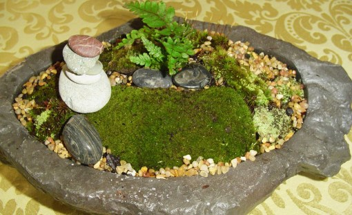 A moss garden I constructed in February of 2012 using stones picked up on the beach in Oregon.