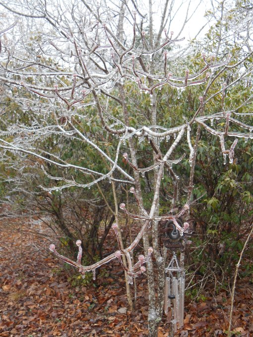 January 14, 2015 ice storm 046
