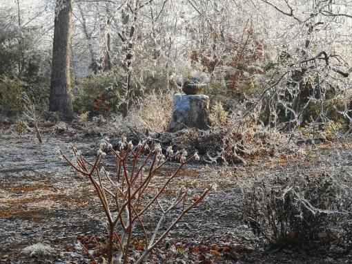 January 15, 2015 ice garden 024