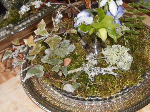 There is a bit of potting soil and sand beneath the moss to sustain the plants growing in the glass plate.