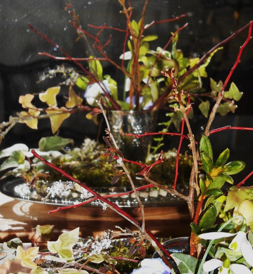 January 26, 2015 Monday vase 009
