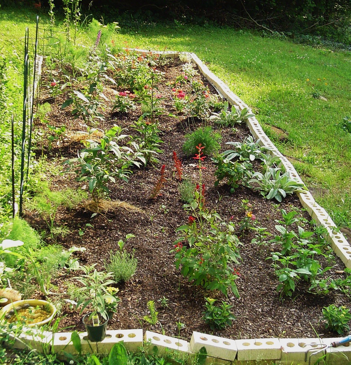 Our first raised bed garden in our new garden, mixing herbs, shrubs, and perennials.