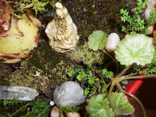 February 1, 2015 moss garden 007