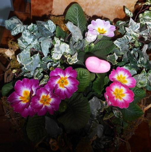 February 14, 2015 flower basket 002