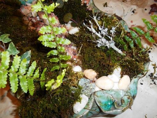 February 17, 2015 leaf garden 022