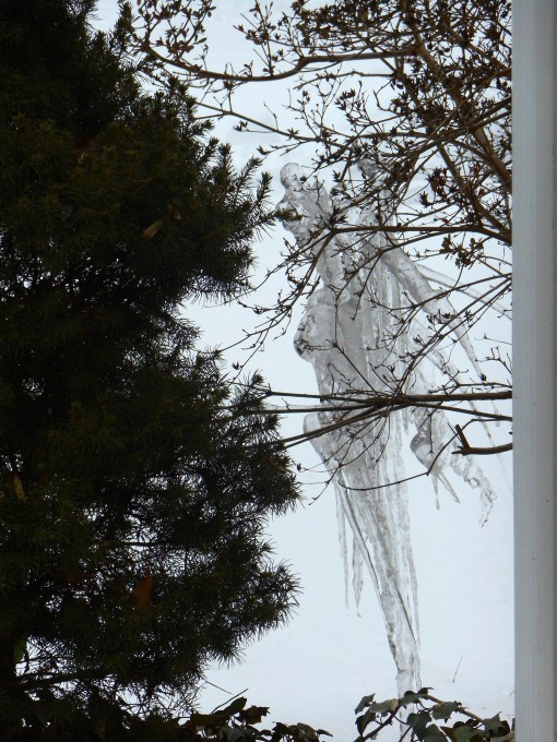 February 21, 2015 ice 002