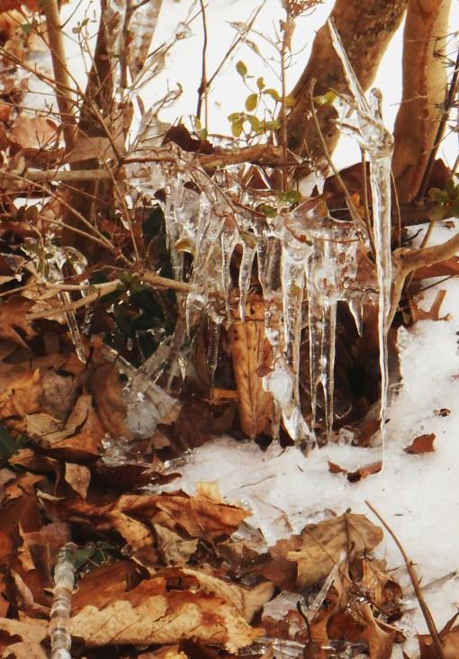 February 21, 2015 ice 009