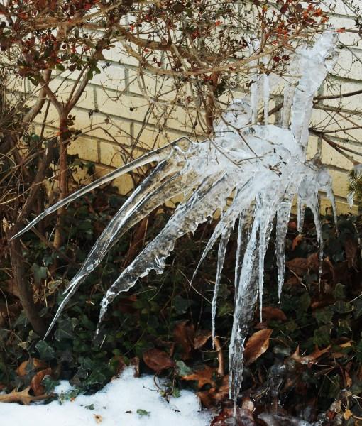February 21, 2015 ice 011