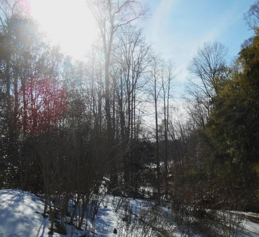 February 25, 2015 snow melt 025