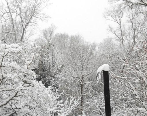 February 26, 2015 snow 001