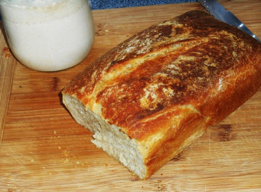 Sourdough bread still warm from the oven and a jar of newly fed starter