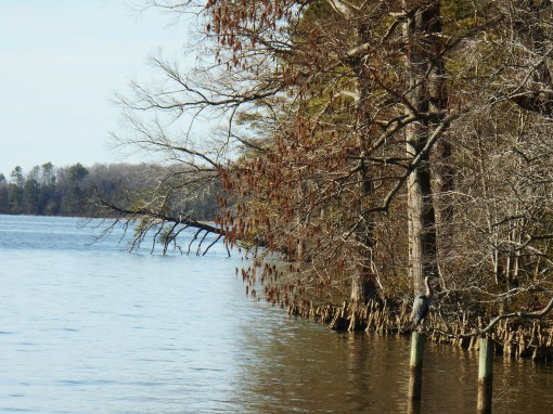 The Chickahominy River flows into the James, then on to the Chesapeake Bay.