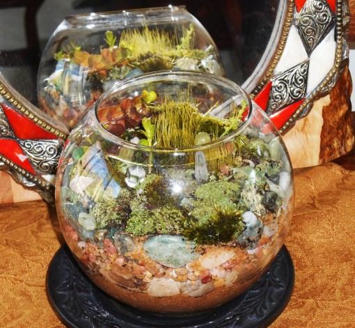 March 21, 2015 moss garden 005