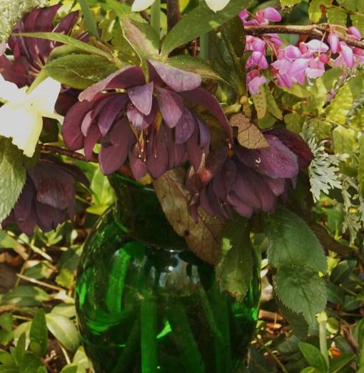April 13, 2015 spring flowers 009