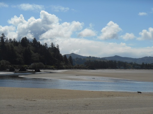 Siletz Bay, low tide