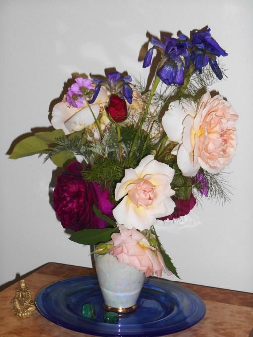 May 15, 2015 roses 050