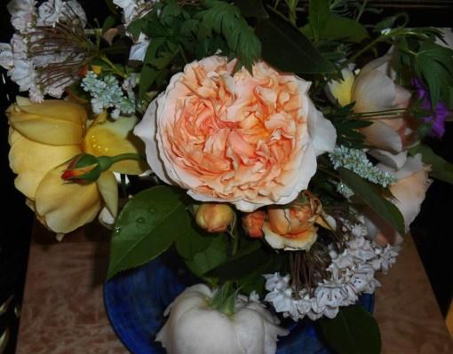May 18, 2015 roses 003