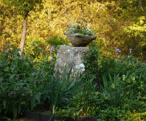 The newly planted pot on its pedestal, this evening just before sunset.  All of these newly planted varieties will grow quite large over the summer with very little attention.