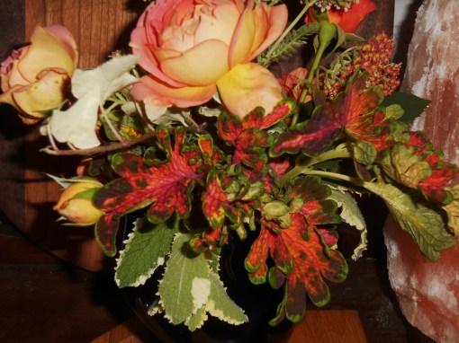 June 1, 2015 in a vase 009