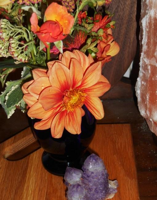 June 1, 2015 in a vase 011