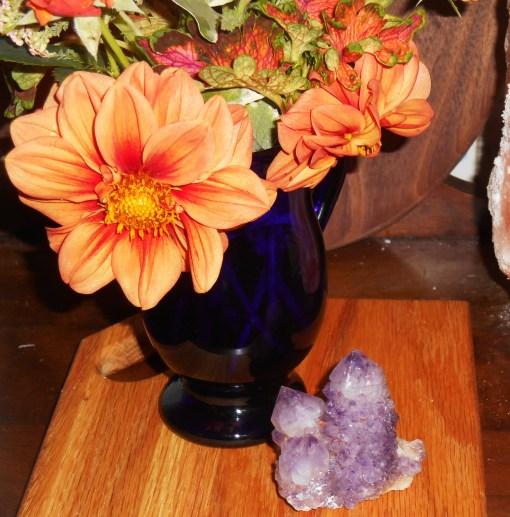 June 1, 2015 in a vase 014