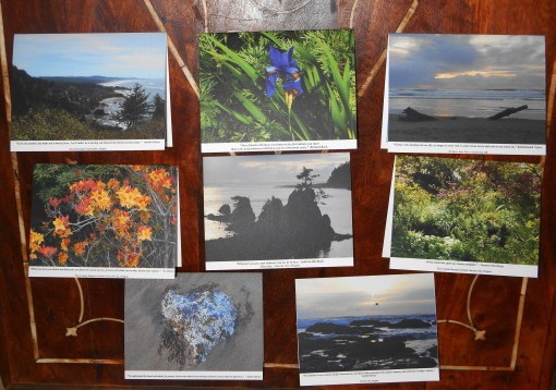 This set of 8 note cards, with matching envelopes, is available for purchase.