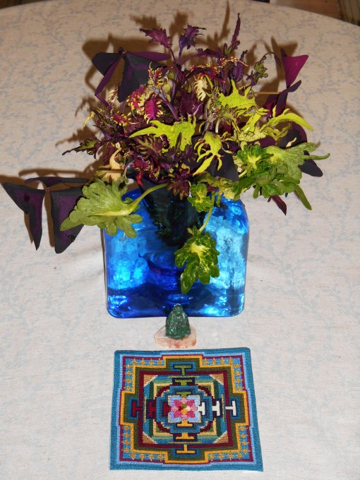Cut on July 15, these Coleus stems have mostly rooted now and are ready for pots.  I love how the colors reflect the mandala needlework, just finished a few days ago and waiting for a frame.