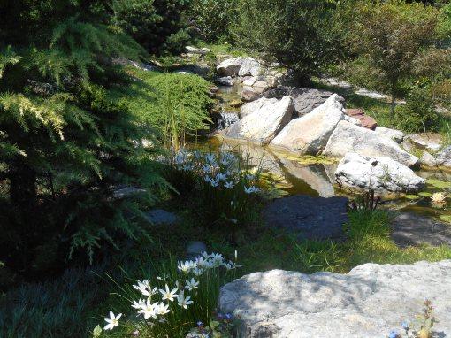 August 15, 2015 Gardens 106