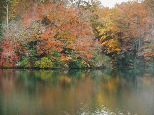 November 1, 2015, fall drive 008