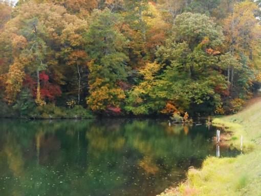 November 1, 2015, fall drive 013