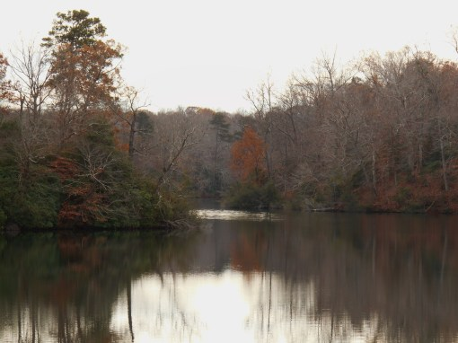 November 28, 2015 fall color 012