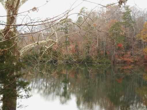 November 28, 2015 fall color 027