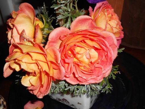 November 30, 2015 Roses 006