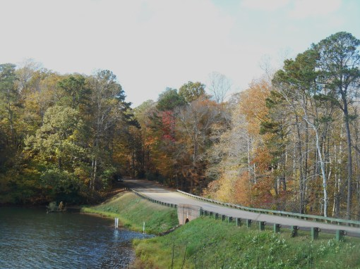The causeway at Jone's Pond, along the Colonial Parkway in York County.