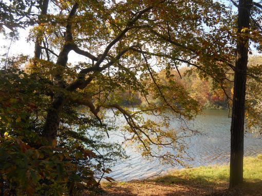 Jones Pond