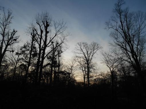 December 12, 2015 sunrise 001