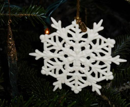 December 25, 2015 Christmas tree 008