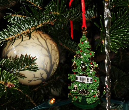 December 25, 2015 Christmas tree 011