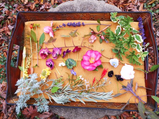 December 28, 2015 Garden Tray 001