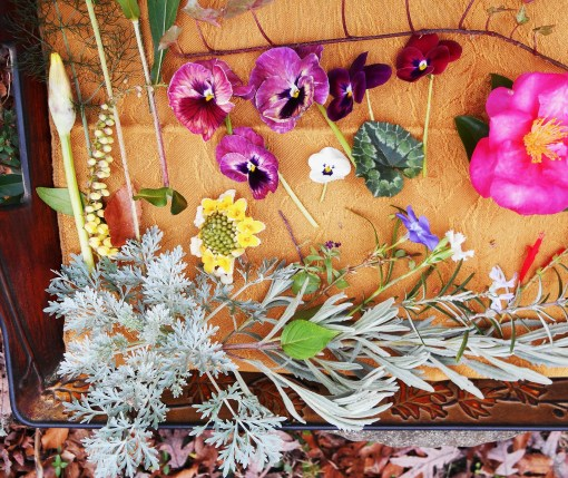 December 28, 2015 Garden Tray 005