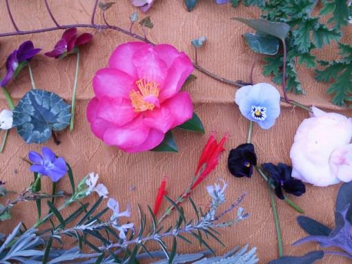 December 28, 2015 Garden Tray 008