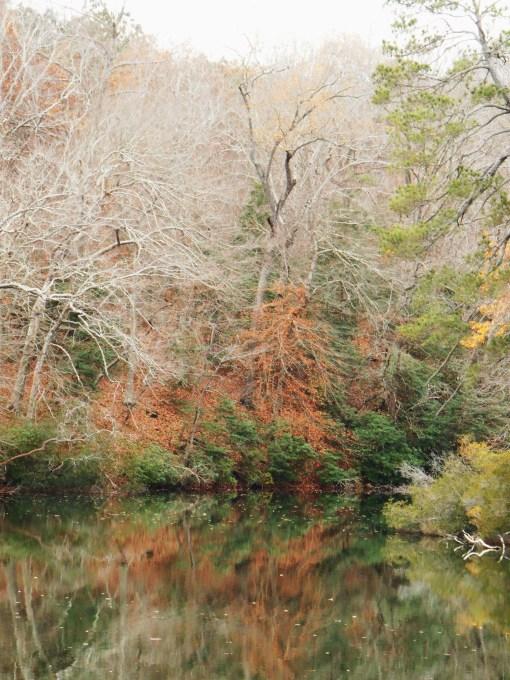 November 28, 2015 fall color 020