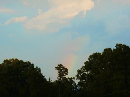 June 30, 2016 rainbow 006
