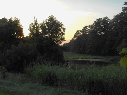 August 10, 2016 River at dusk 042