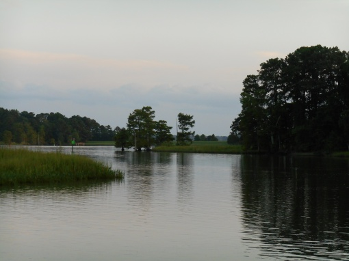 August 10, 2016 River at dusk 057