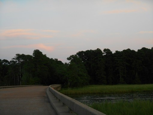 August 10, 2016 River at dusk 061