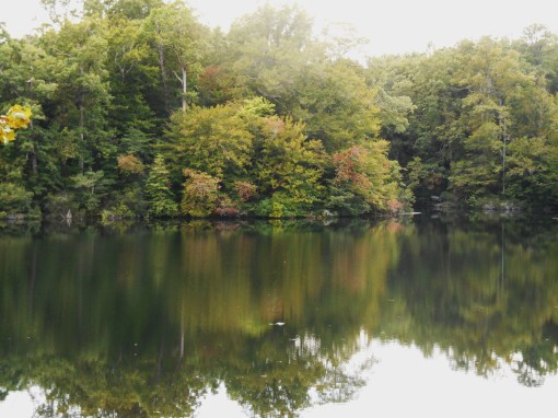 And suddenly, it is beginning to look like autumn here. Jones Mill Pond, as it looked last evening.
